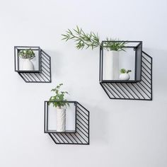 Warren - Effect Iron Box Planters – Warmly Wall Decor Design, Shelf Design, Diy Wall Decor, Diy Hanging Shelves, Metal Shelves, Floating Shelves, Shelving, Decorating Bookshelves, Succulent Wall