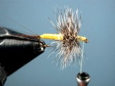 How to tie gray hackle yellow
