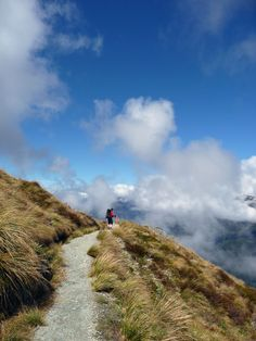 On the Routeburn Track, New Zealand