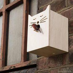 Ha Cat birdhouse