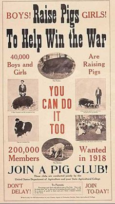 """""""Raise Pigs To Help Win the War"""" ~ WWI Pig Club recruitment poster."""