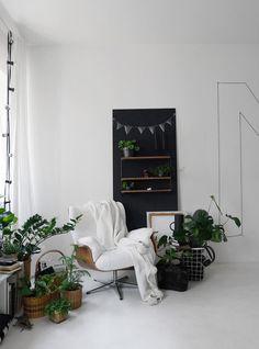 grüne flaschen | dekoration und innenräume