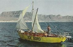 Ice Bird, NOT Yellow Submarine!