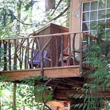 TreeHouse Point Nest
