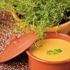 Recipe from Rineke Dijkinga, orthomolecular therapist: tasty and easy pumpkin soup. Pumpkin with coconut milk, ginger, turmeric and coconut oil. Pureed Food Recipes, Soup Recipes, Cooking Recipes, Veggie Soup, Vegetarian Soup, Tanzanian Recipe, Cooking For Dummies, Vegan Meal Plans, Vegan Kitchen