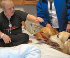 Therapy Dogs Reduce Stress in Autistic Children