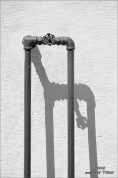 Canos - photo: Cesar Trimer