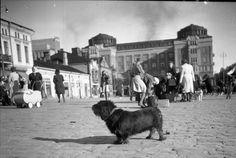 1944 by Bruno Ollila