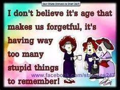 I don't believe it's age that makes us forgetful, it's having way too many stupid things to remember! Old Quotes, Funny Quotes, Old Age Humor, Aging Humor, Senior Humor, Red Hat Society, Young At Heart, All Family, Aging Gracefully