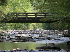 Bridge over Metcalf Bottom in the Smokey Mountains. Tennessee