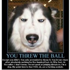Sorry, had to repin this one, I am in tears laughing.....OMG...So funny!