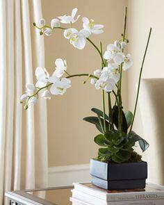 orchid deco - Google 検索