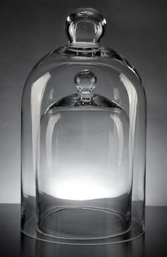 Apothecary jars, bell jars, vases, etc. at decent prices. After seeing a terrarium in an apothecary jar, I think I may want one really badly...