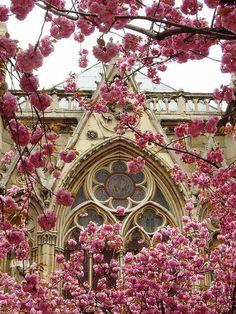 Church Window, pretty backdrop
