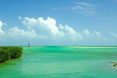 I want to go back here : ) Islamorada Florida Keys