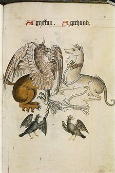 MS. Ashmole 1504 (b)  (TAG: PUBLIC DOMAIN)