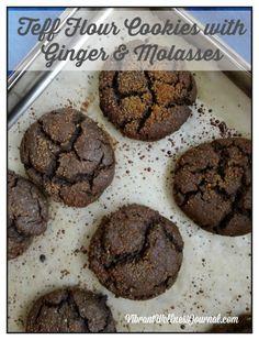 teff cinnamon-molasses crinkle cookies vegan, no added sugar, high fiber plant based protein Dairy Free Cookies, No Flour Cookies, Coconut Cookies, Crinkle Cookies, Cookies Vegan, Teff Recipes, Coconut Recipes, Flour Recipes, Peanut Butter Cups