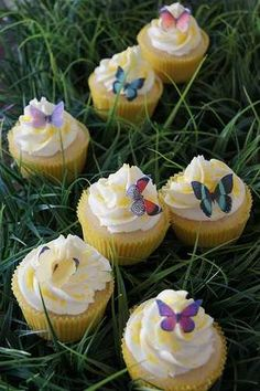 Adorable Butterfly Cupcake