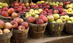Everything You Need to Know About Apples Read more Ready in 270 minutes Slow Cooker Hodge Podge Serves: 8 See recipe Are You On the List? Subscribe to our eFlyer and Better Food eNewsletter. Subscribe Now Are You On the List? Subscribe to our eFlyer and Better Food eNewsletter. Subscribe Now Sobeys Mobile App. Anytime. …