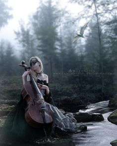 beautiful cellos - Google Search