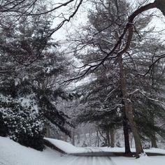 Steubenville Ohio Steubenville Ohio, Close To Home, Places, Destinations, Outdoor, Memories, Image, Outdoors, Memoirs