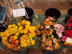 Mercado de flores Primavera Francia