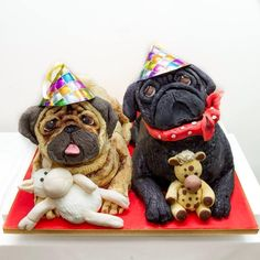 This is a birthday cake I made for a pugs birthday. The fawn pug is called Boo and the black pug Onyx. It took me 2 1/2 days solidly!