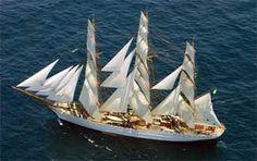 """El """"Cisne Branco"""" en plena navegación hacia Mar del Plata."""