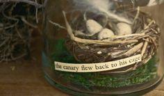 Nest in Jar Assemblage by mothsandrustshop on Etsy, $12.50