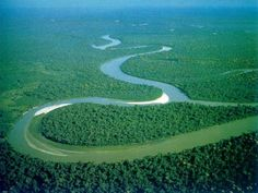 Interesting Facts about Amazon River