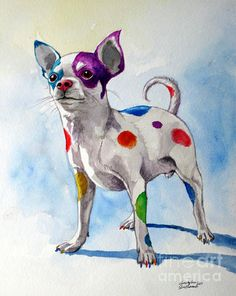 Colorful Dalmatian Chihuahua by Christopher Shellhammer