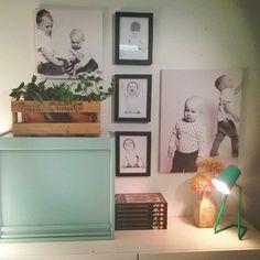 Mies sisustaa. Kaivettuaan Ankkojen maailmanhistoria -kirjasarjan postipaketista Hän asetteli sen kauniisti ja harkitusti hyllynpäälle. Kävi vielä tekemässä yleissilmäyksen kauempaa että varmasti istuu kokonaisuuteen.  #sisustus #asetelma #inredning #interior #myhome #koti #olohuone #livingroom