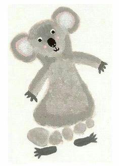Koala pied