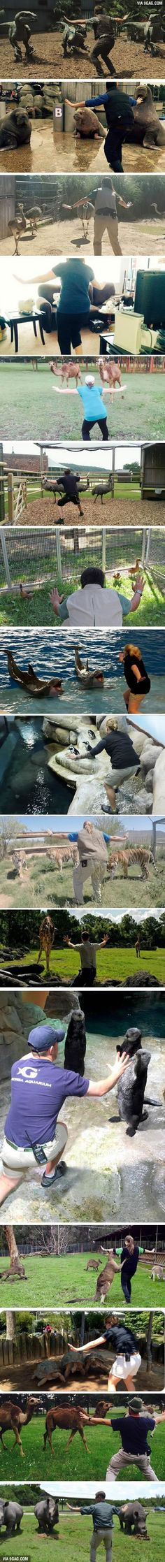 Zookeepers being Chris Pratt. Apparently this is a thing now.