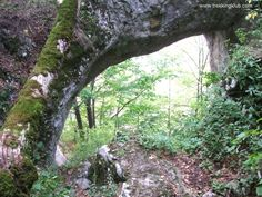 Bedeleu > < Hiking and caving photos Mountaineering, Macedonia, Arches, Romania, Trekking, Backpacking, Dragons, Gate, Universe