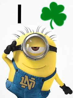 """Minish. Like the Irish?  Be sure to check out and """"LIKE"""" my Facebook Page https://www.facebook.com/HereComestheIrish Please be sure to upload and share any personal pictures of your Notre Dame experience with your fellow Irish fans!"""