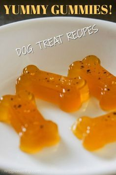 This homemade gummy dog treat recipe is a quick and easy way to give your dog soft, yummy and healthy treats anytime. Sweet and savory options. Low calorie, low fat, super easy to make. These wobbly little treats are winners. Soft Dog Treats, Frozen Dog Treats, Diy Dog Treats, Healthy Dog Treats, Puppy Treats, No Bake Dog Treats, Dog Biscuit Recipes, Dog Treat Recipes, Dog Food Recipes