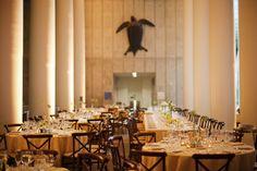 California Academy of Science l San Francisco Wedding Venue l Best Wedding Venues in San Francisco (Photo by: This Modern Romance) #sfweddings #elegantweddings #weddingvenues #sanfrancisco