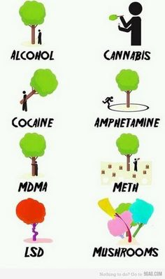 The different stages of drugs with trees