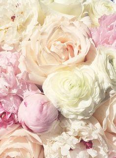 Peonies & Roses.
