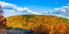 CONNECTICUT: Like other New England states, Connecticut makes a stunning place to stop and see the fall foliage. Fun fact: The trees along the Connecticut River, from the mouth of the Long Island Sound to East Haddam, will hold the foliage the longest.