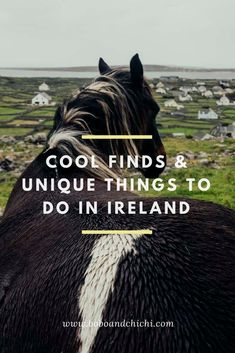 16 Unique Things to Do in Ireland - Bobo and ChiChi Check out this guide for cool finds and unique things to do in Ireland including amazing places to visit in Ireland, Ireland photo spots, and amazing things to do in Ireland. Ireland Places To Visit, Cool Places To Visit, Places To Travel, Places To Go, Vacation Places, Ireland Travel Guide, Ireland Hiking, Ireland Destinations, Ireland Landscape