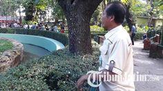 Demi Pelayanan pada Pengunjung, Keeper Kebun Binatang Surabaya Tak Mudik saat Lebaran