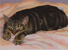 Sleeping tabby by English artist Celia Pike