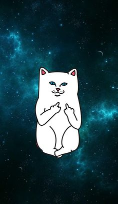 Ripndip iphone wallpaper #ripndip #middle #finger #cat #wallpaper #iphone #galaxy