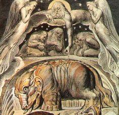 Behemoth - William Blake's Illustrations of the Book of Job - Wikipedia