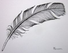 crow feather drawing - Google Search