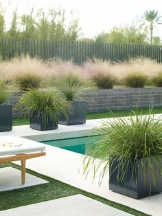 Loving this look of soft grasses, hard paving and modern form for gardens & landscaping ideas.