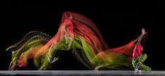 """Résultat de recherche d'images pour """"decomposition danse"""""""