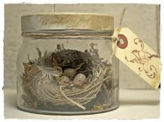 Glass Jar with Nest and Eggs by mothsandrustshop on Etsy